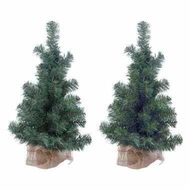 2x kleine kerstboom 45 cm