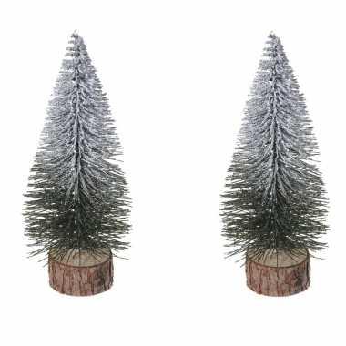 2x stuks kerstdecoratie kleine/mini kerstboompjes besneeuwd 25 cm