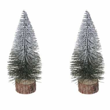 6x stuks kerstdecoratie kleine/mini kerstboompjes besneeuwd 25 cm