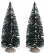2x kerst landschap kerstdorp boom 22 cm met licht op batterijen
