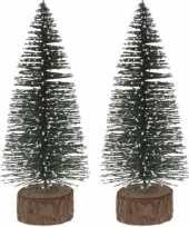 2x miniatuur kerstboompjes groen 25 cm